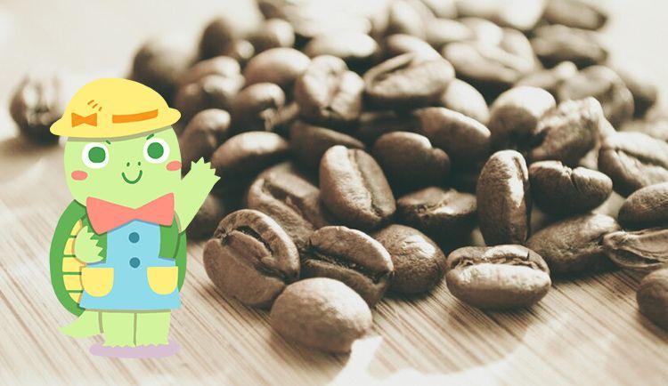 投資信託はいくらから始められるの?実はコーヒー一杯分から可能です